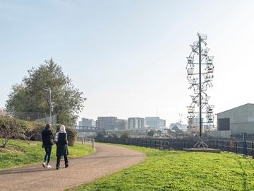 Free: The Line - wellbeing walks